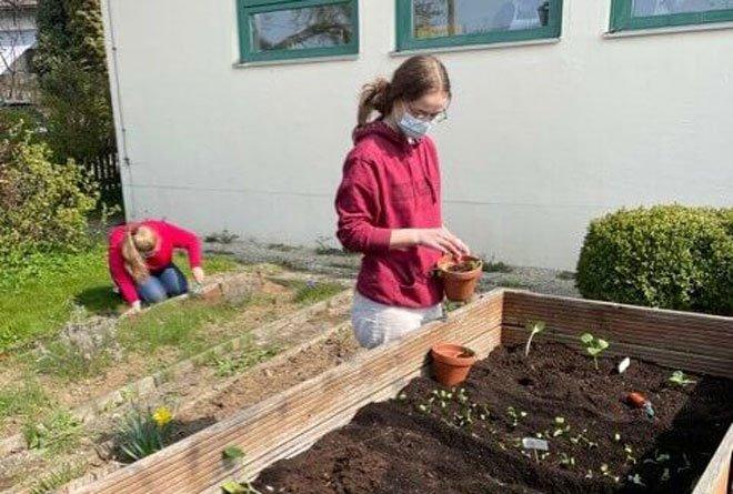 Schülerin bei der Arbeit im Schulgarten
